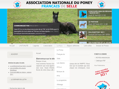 Association Nationale des Poneys Français de Selle